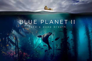 Blue Planet II - Watch online HD Documentary Series