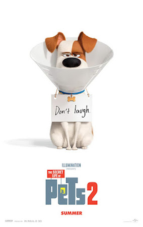 Poster Of The Secret Life of Pets 2 In Dual Audio Hindi English 300MB Compressed Small Size Pc Movie Free Download Only At worldfree4u.com
