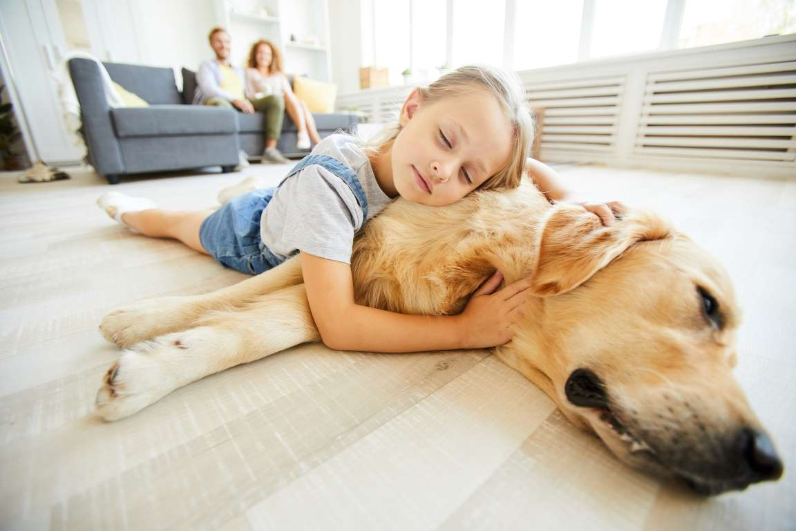 keep children safe from home dogs