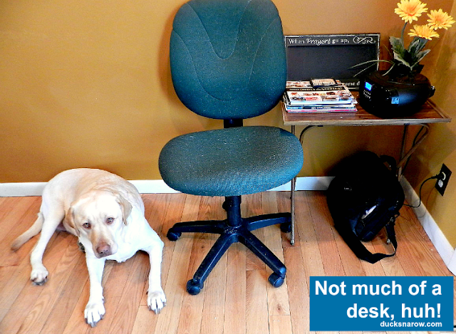 WAHM, blogging, mom blogger, in home office, yellow lab