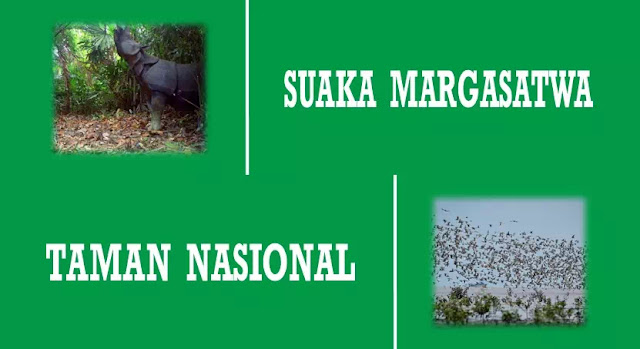 perbedaan suaka margasatwa dan taman nasional