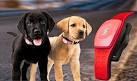 Dispositivos para buscar mascotas perdida