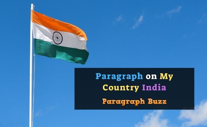 Paragraph on My Country India for Students