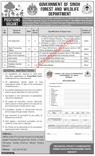 Latest Sindh Govt Jobs in forest and wildlife