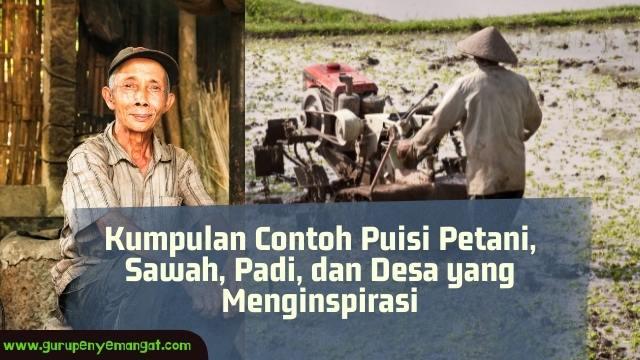 Contoh Puisi Petani, Sawah, Padi, dan Desa yang Menginspirasi