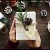 Οικολογικές αγορές για δώρα