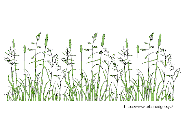 Grass and Shrubs free cad block download