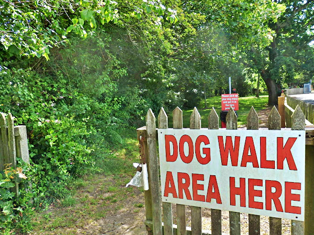 Dog walking area, Par Market, Cornwall