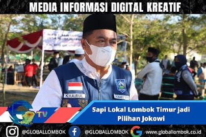 Sapi Lombok Timur Jadi Pilihan Jokowi, Ini Alasannya