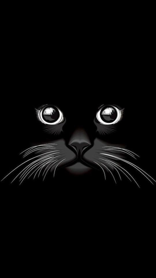 Beautiful Cat Vector To 540x960 Wallpaper
