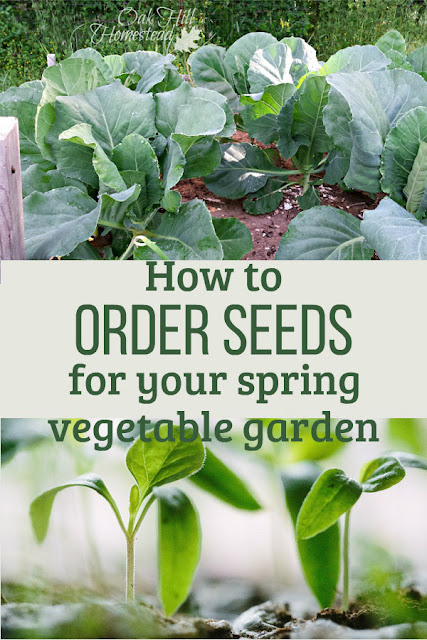 There's no better way to spend a winter evening than planning your spring garden. Here's how to choose what to order so you won't forget the carrots.