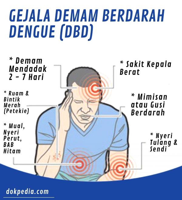 Gejala DBD - dokpedia