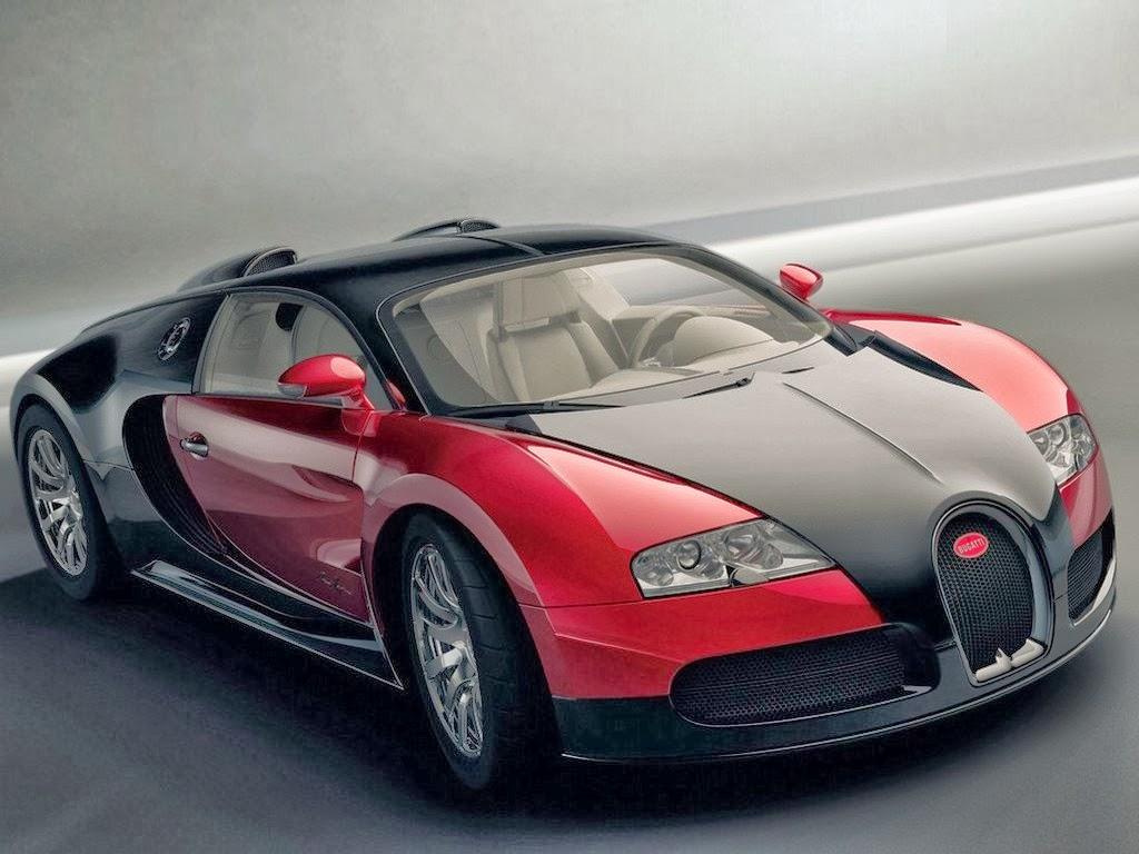 Luxury Vehicle: Database Error
