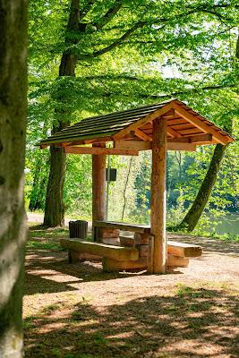 Premiumwanderweg DonAUwald | Etappe 3 von Gundelfingen nach Dillingen 15