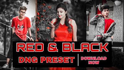 Red and black preset dng