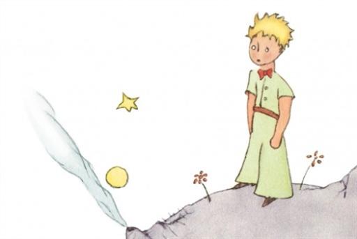 ملخص رواية الأمير الصغير لغة عربية صف ثاني عشر الفصل الثاني
