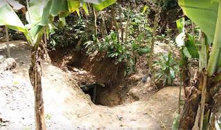 yacimiento de ambar republica dominicana | foro de minerales
