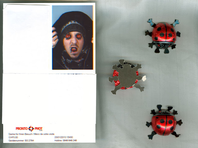 chocolate, ladybugs, chocolate bugs, good luck, photobooth, booth, photo machine