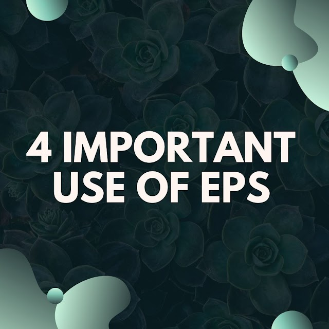 4 Important Use of EPS While Choosing Stocks