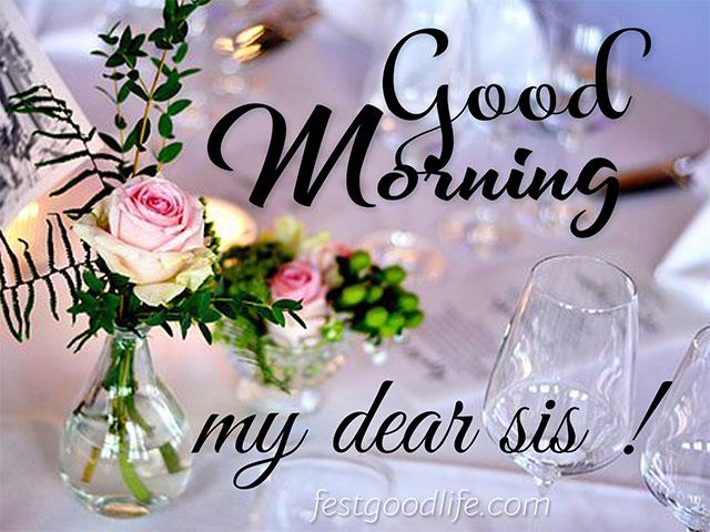 image download beautiful rose good morning images
