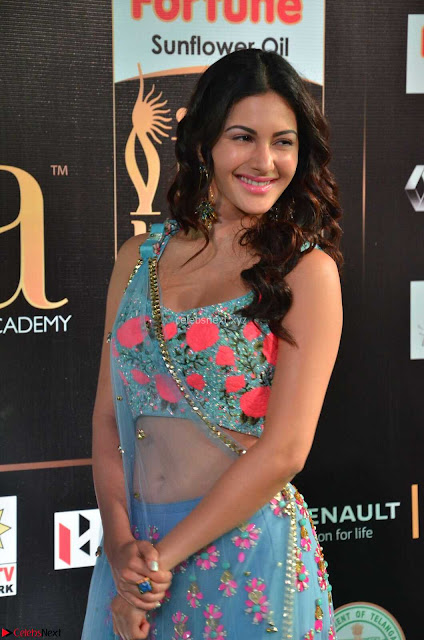Amyra Dastur in Flower Print Choli Transparent Chunni at IIFA Utsavam Awards001.JPG