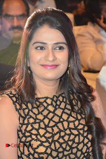 C/O Godavari Audio Launch | ~ Bollywood and South Indian Cinema Actress Exclusive Picture Galleries