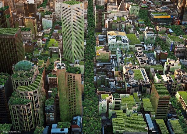 Thành phố Basel bắt buộc trồng cây xanh trên mái nhà