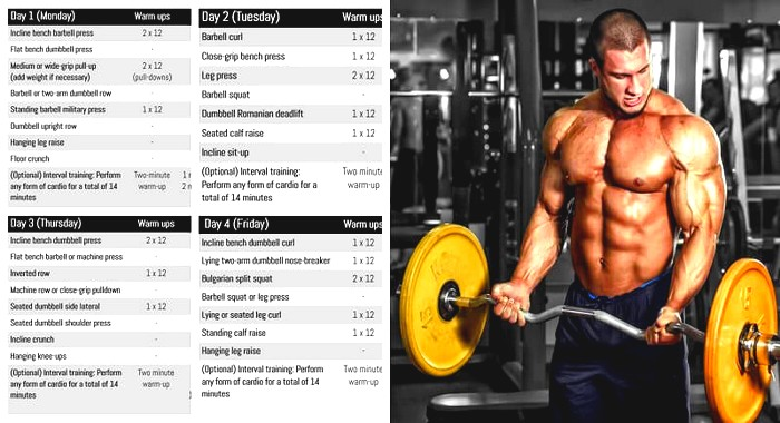 Ultimate Workout Plan For Serious Mass Gain