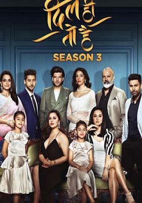 Dil Hi Toh Hai Hindi S03 Complete WEB Series 720p HEVC Esub