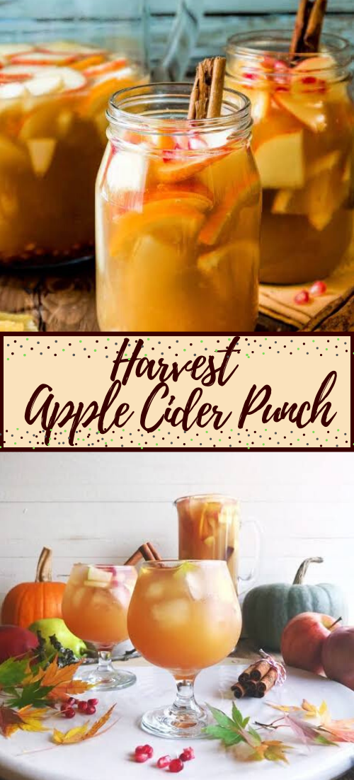 Harvest Apple Cider Punch  #healthydrink #easyrecipe #cocktail #smoothie