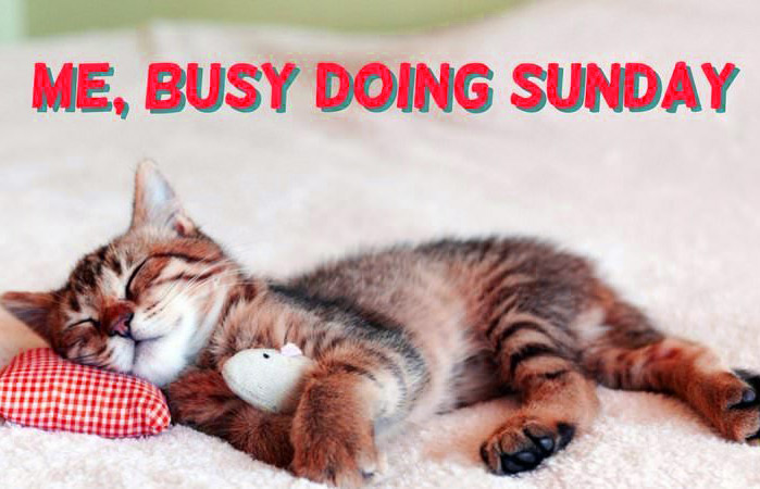 Funny%2BSunday%2BImages%2BHD%2B5