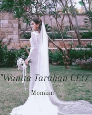 Novel Wanita Taruhan CEO Karya Momian Full Episode