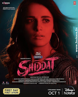 Shiddat: Journey Beyond Love Poster 3