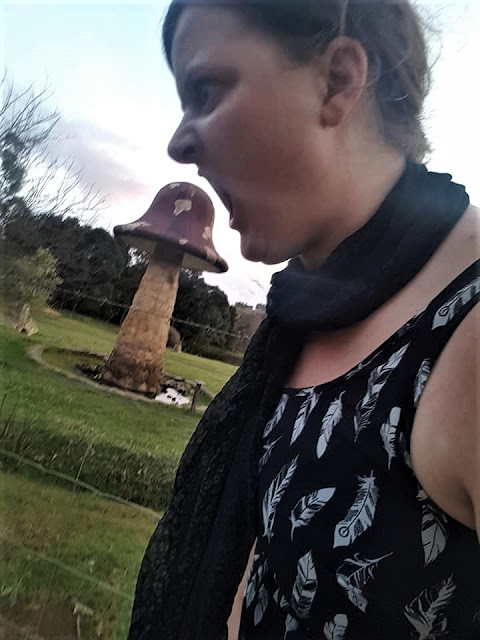 BIG Magic Mushroom | Balingup