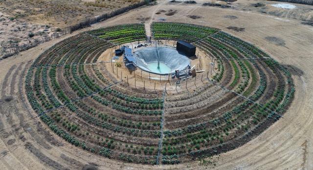 ENGIE implanta horta na comunidade de Rodoleiro em Umburanas