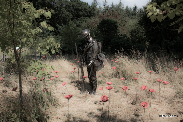 "Remembrace. ""The Unknown Soldier"" in a field of poppies. Photo copyright Pat Adams"