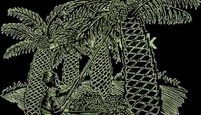 Sejarah dan kontribusi kelapa sawit bagi kehidupan