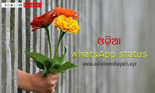 Odia Whatsapp status : -latest New Odia Love shayari whasapp status