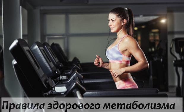 Метаболизм, обмен веществ, похудение