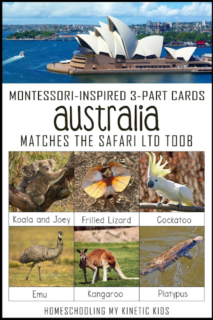 Learn about the Australia with the Safari Ltd Land Down Under toob figurines.  Free printable 3-part cards to match the toys.