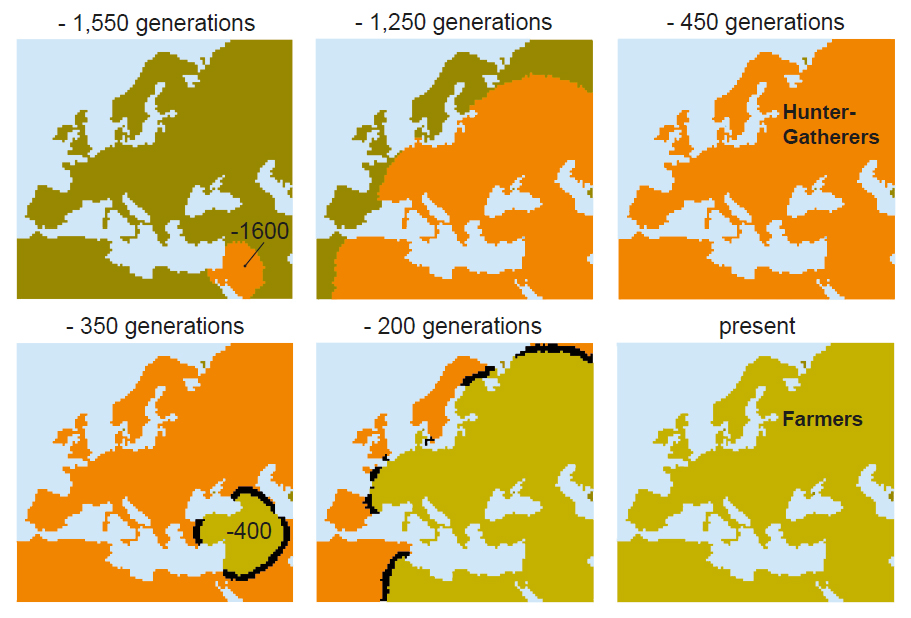 1550 generations ago hunter-gatherers arrived in Europe, while farmers only arrived 350 generations ago