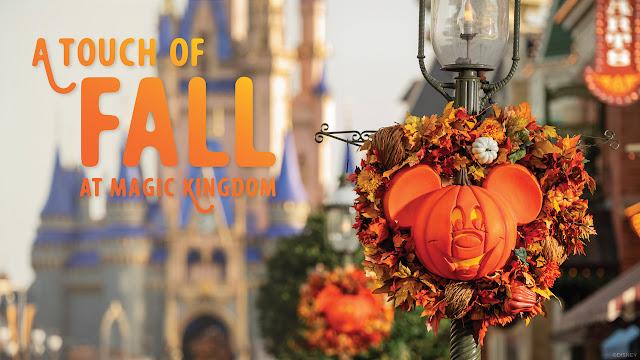 Magic Kingdom 2020 Halloween Hollywood Studios Walt Disney World Resort