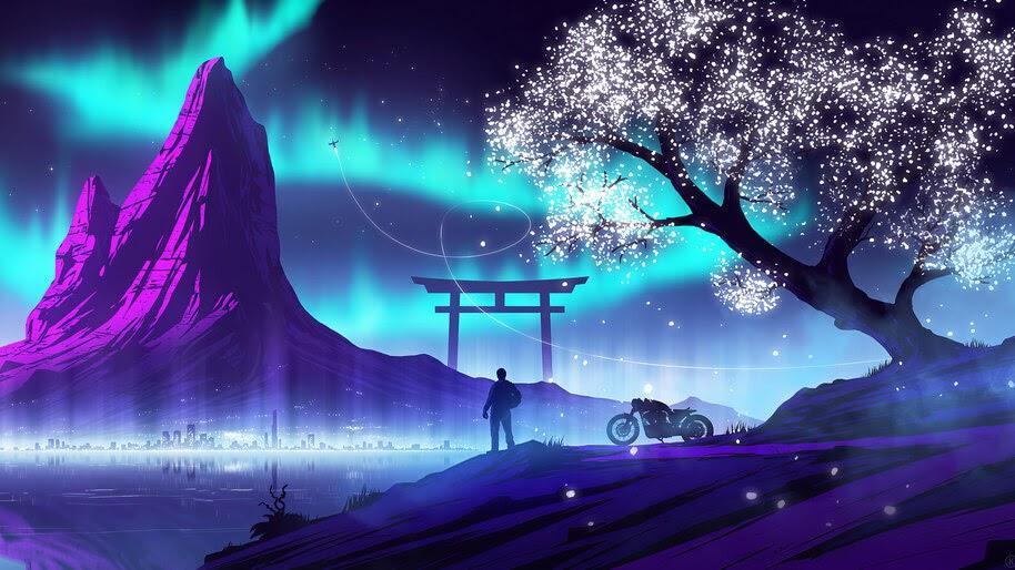Biker, Guy, Silhouette, Night, Scenery, Landscape, Digital Art, 4K, #6.1249