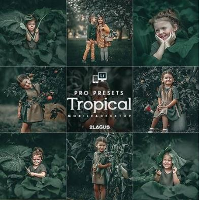 Preset Lightroom Tropical tone màu xanh lá(Mobile/Desktop)