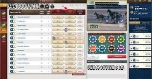 Hiểu luật chơi khi tham gia cá cược đua ngựa