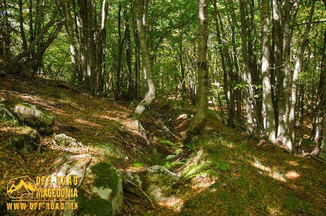 Remains of WW1 Bulgarian trenches near Sokol peak on Nidze Mountain
