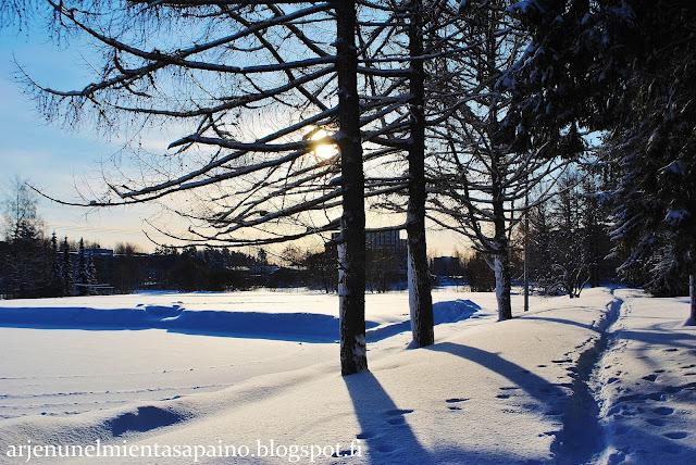 luonto, vapaa-aika, valokuvaus, lumi, talvi, maaliskuu