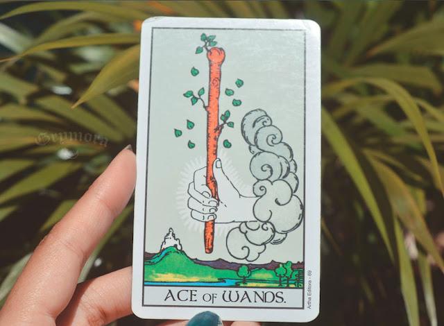 Significado da Carta Ás de Paus no Tarot no amor, trabalho e dinheiro, saúde, como obstáculo ou invertida e como conselho