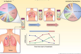 Lung Cancer and Lymphoma - DNA Analysis and Molecular Genetics