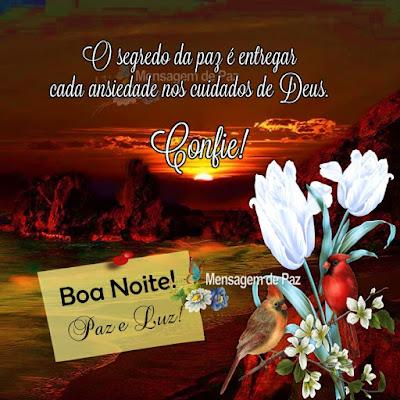 O segredo da paz é entregar cada ansiedade nos cuidados de Deus. Boa Noite! Paz e Luz!